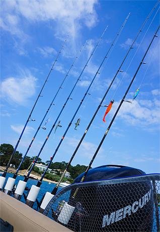 équipement pêche sportive